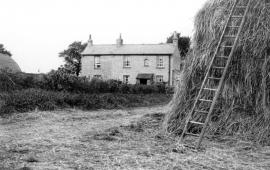 Munseys farm Royston Road